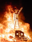Highlight for Album: Burningman 2003