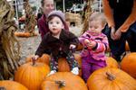 Highlight for Album: The Pumpkin Patch - 10/21/10