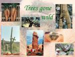trees-gone-wild